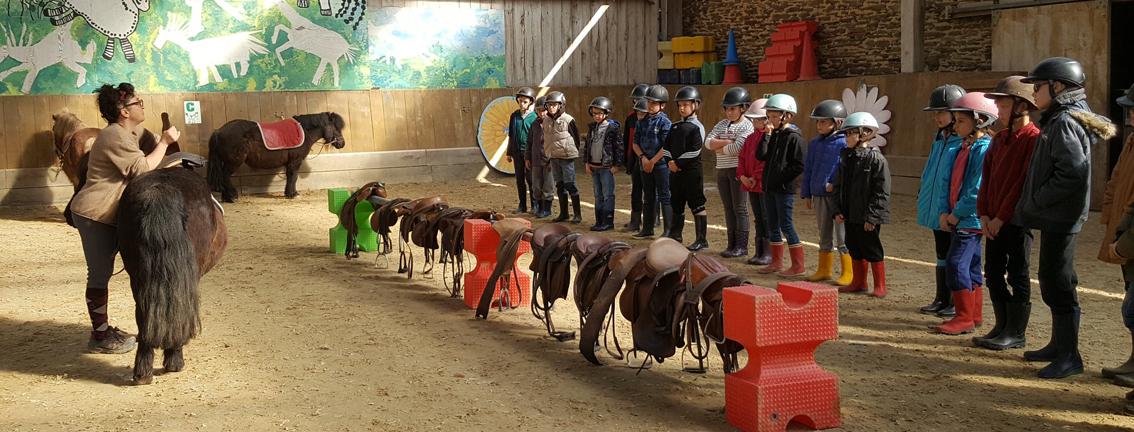 Séjour vacances à poney à Fénicat